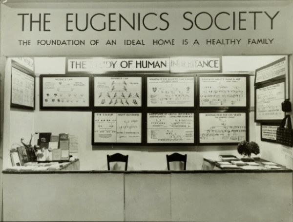 Eugenics, intelligence, and superiority: How quantifying human value created a history of invisible violence