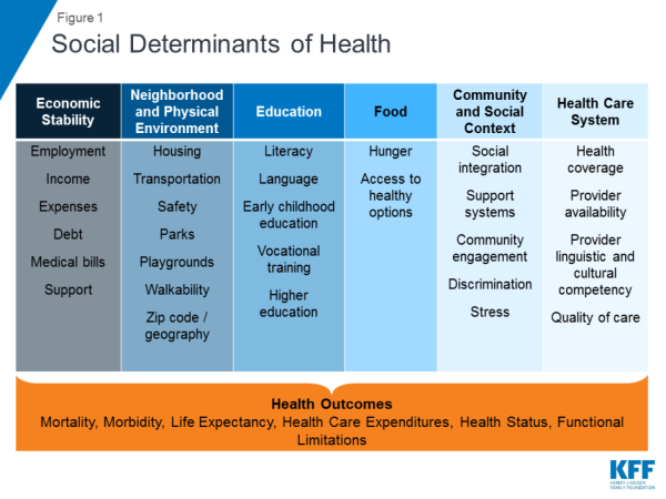 Moving beyond medicine: Using the social determinants of health to address public health disparities