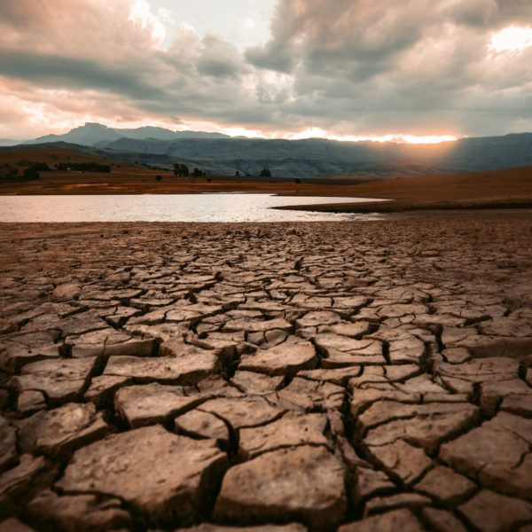Ripple effects of global warming and climate change on American public health disparities